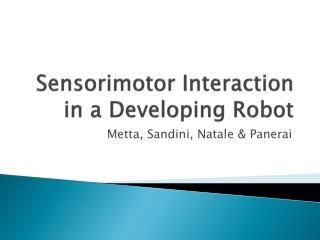 Sensorimotor  Interaction in a Developing Robot