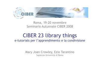 Roma, 19-20 novembre Seminario Autunnale CIBER 2008 CIBER 23 library things