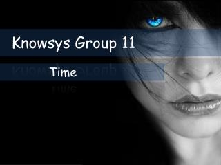 Knowsys Group 11