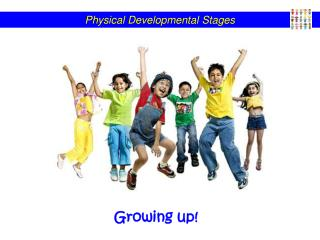 Physical Developmental Stages