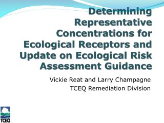 Vickie Reat and Larry Champagne TCEQ Remediation Division
