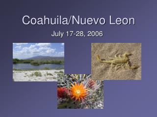 Coahuila/Nuevo Leon