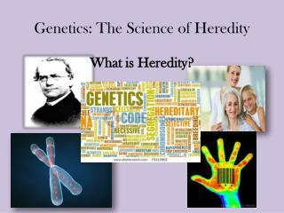 Genetics: The Science of Heredity