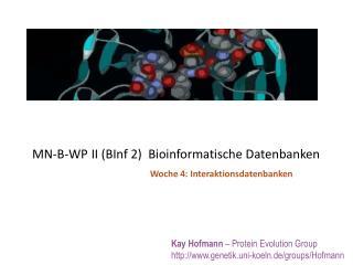 MN-B-WP II (BInf 2)  Bioinformatische Datenbanken
