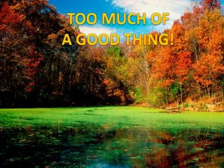 TOO MUCH OF  A GOOD THING!