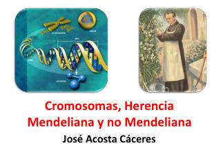 Cromosomas, Herencia Mendeliana y no Mendeliana