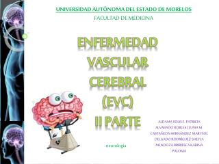 Enfermedad Vascular Cerebral ( evc ) Ii  parte