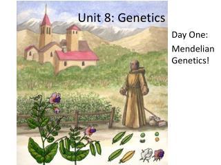 Unit 8: Genetics