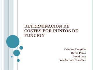 DETERMINACION DE COSTES POR PUNTOS DE FUNCION