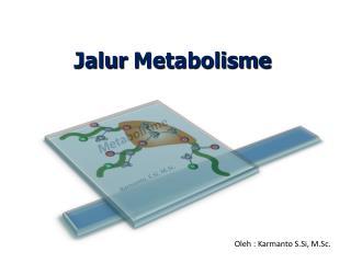 Jalur Metabolisme