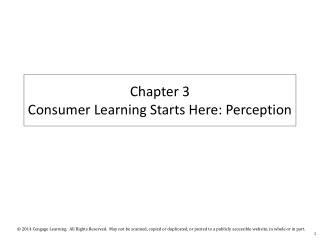 Chapter 3  Consumer Learning Starts Here: Perception