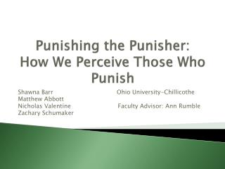 Punishing the Punisher: How We Perceive Those Who Punish