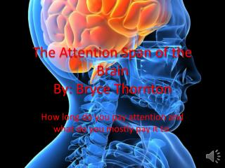 The Attention Span of the Brain By: Bryce Thornton