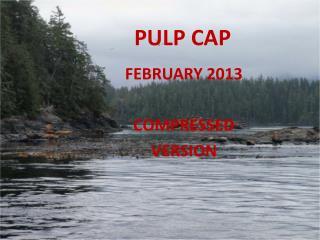PULP CAP