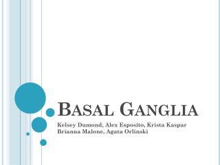 Basal Ganglia