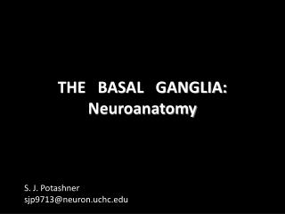 THE   BASAL   GANGLIA: Neuroanatomy