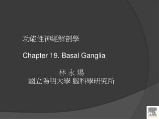 功能性神經解剖學 Chapter  19. Basal Ganglia  林 永 煬 國立陽明大學 腦科學研究所