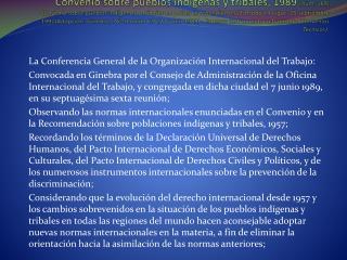 La Conferencia General de la Organización Internacional del Trabajo: