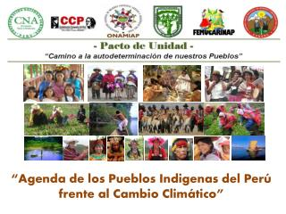 """""""Agenda de los Pueblos Indigenas del Perú frente al Cambio Climático"""""""