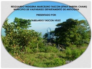 RESGUARDO INDIGENA MARCELINO TASCON (ETNIA EMBERA CHAMI)