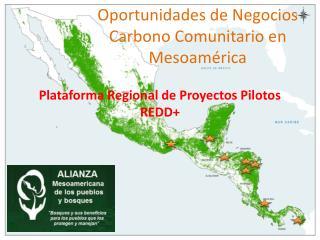 Oportunidades de Negocios Carbono Comunitario en Mesoamérica