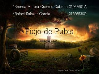 *Brenda Aurora Osornio Cabrera 21063691A *Rafael Salazar García              21086536G