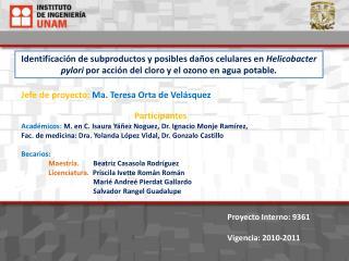 Jefe de proyecto:  Ma. Teresa  O rta  de Velásquez Participantes