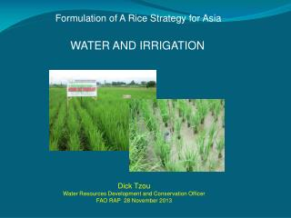 Formulation of A Rice Strategy for Asia