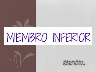 Alejandra Alp�zar Carolina Gamboa
