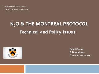 N 2 O & the Montreal Protocol