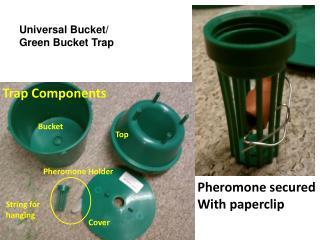 Trap Components