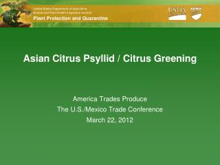 Asian Citrus Psyllid / Citrus Greening