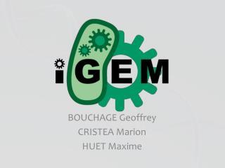 BOUCHAGE Geoffrey CRISTEA Marion HUET Maxime