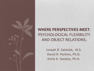 Where Perspectives Meet : Psychological Flexibility and Object Relations.
