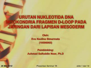 URUTAN NUKLEOTIDA DNA MITOKONDRIA FRAGMEN D-LOOP PADA JARINGAN DARI LAPISAN MESODERM