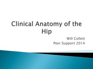 Clinical Anatomy of the Hip
