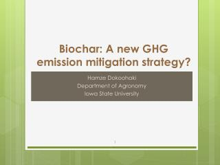 Biochar: A new GHG emission mitigation strategy?
