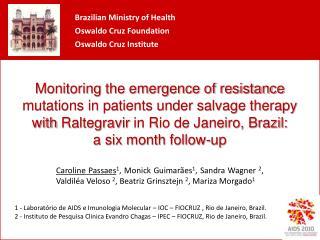 1 - Laboratório de AIDS e Imunologia Molecular – IOC – FIOCRUZ , Rio de Janeiro, Brazil.