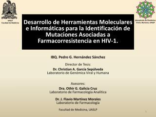 IBQ .  Pedro G.  Hernández Sánchez Director de Tesis: Dr. Christian A. García Sepúlveda