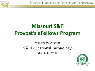 Missouri S&T  Provost's  eFellows  Program