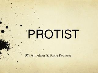 PROTIST