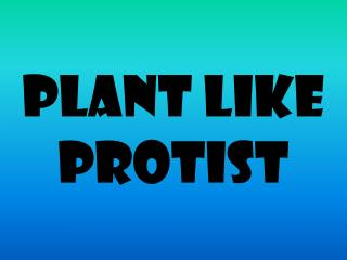 Plant like  protist