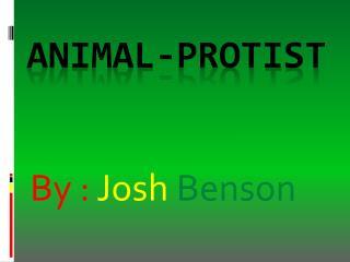 Animal- Protist