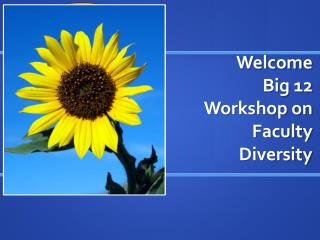 Welcome  Big 12 Workshop on Faculty Diversity