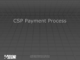 CSP Payment Process