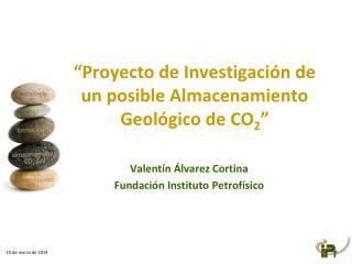 Proyecto de Investigaci n de un posible Almacenamiento Geol gico de CO2