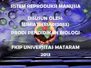 SISTEM REPRODUKSI MANUSIA DISUSUN OLEH: SUMIATI (E1A012053)