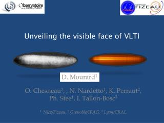 Unveiling the visible face of VLTI