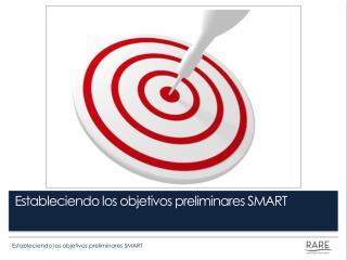 Estableciendo los objetivos preliminares SMART