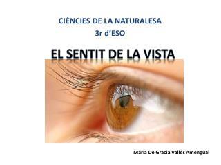 El  sentit  de La vista